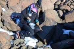 Jenna obtaining geological samples