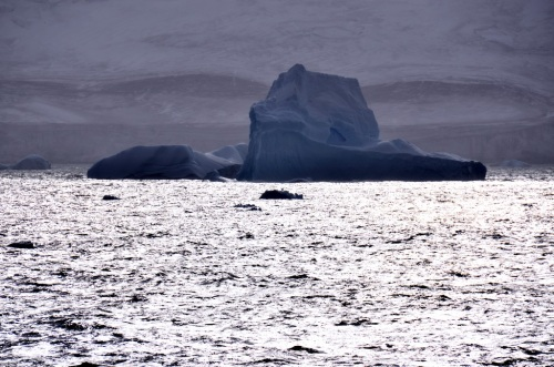 Iceberg off Montague Island.JPG